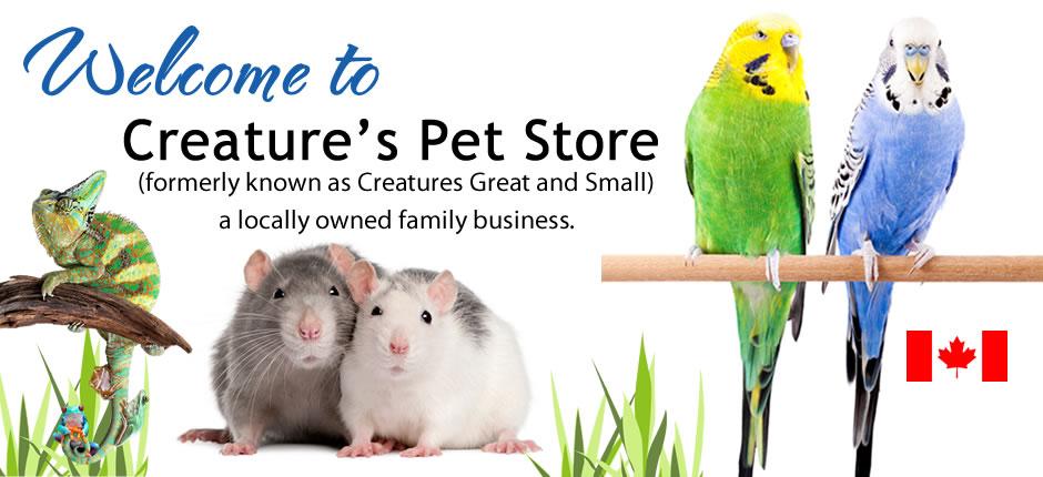 Creatures Pet Store Victoria - Aquariums & Reptiles Victoria